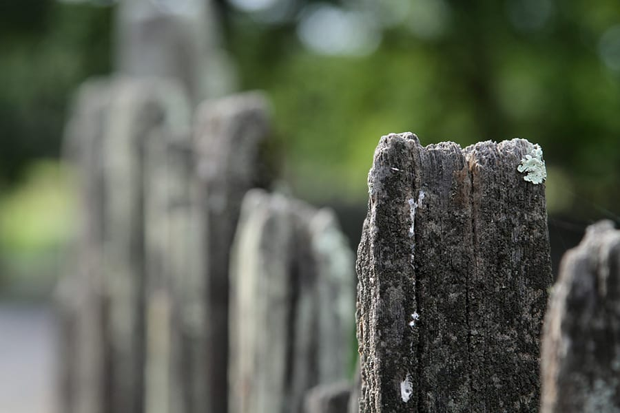 We see a row of wooden post receding into the distance. The further they are behind the post that is in focus, they get more and more out of focus.