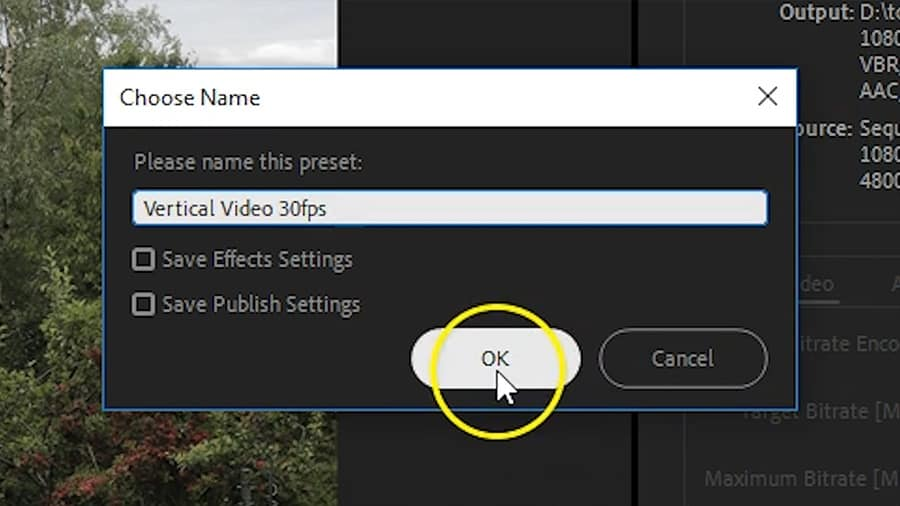 Click OK to save the export preset.