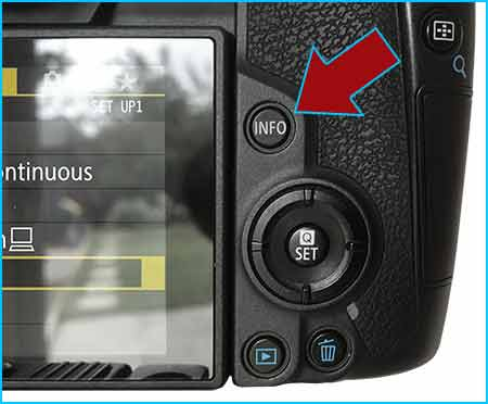 Canon EOS R INFO button