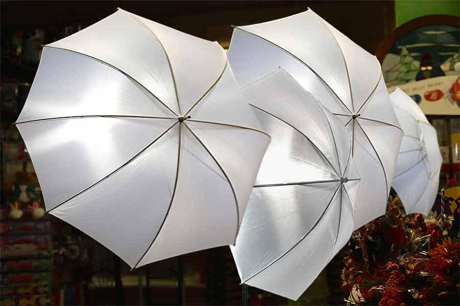 Softbox vs umbrella lighting for video: Best one to buy